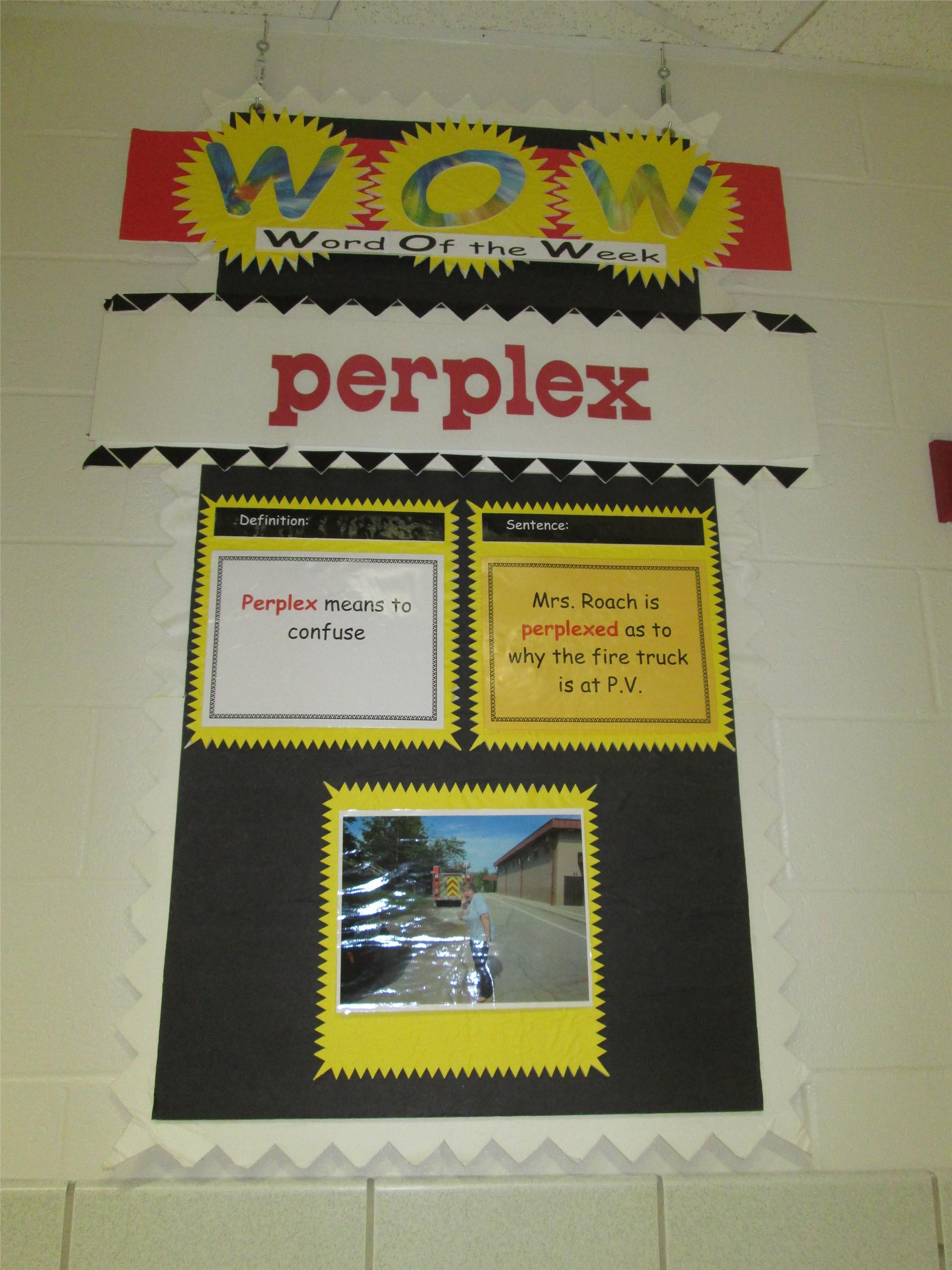 perplex - 9--19 9-23