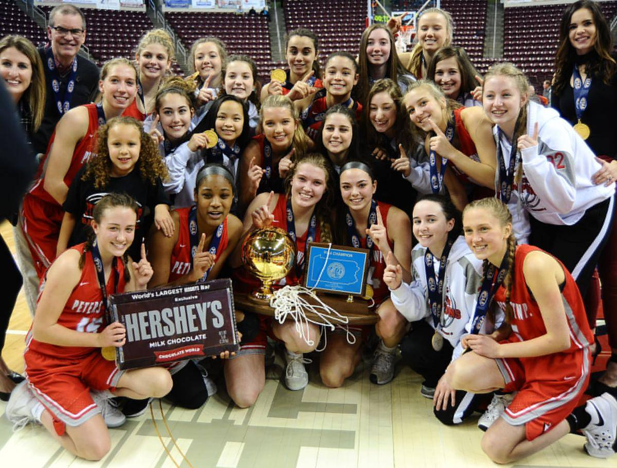 Basketball wins state title