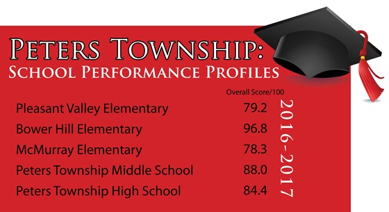 Table of profile summaries for 2016-2017 school year by school.